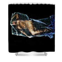 Ryli 9 Shower Curtain