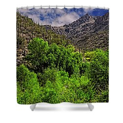 Shower Curtain featuring the photograph Sabino Canyon H33 by Mark Myhaver
