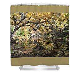 Sabino Canyon In Fall Shower Curtain