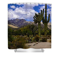 Shower Curtain featuring the photograph Sabino Canyon No4 by Mark Myhaver