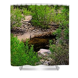 Shower Curtain featuring the photograph Sabino Canyon Op44 by Mark Myhaver