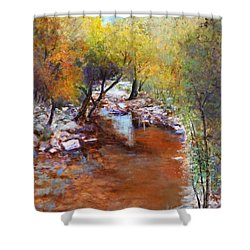 Sabino Canyon Scenes Shower Curtain by M Diane Bonaparte
