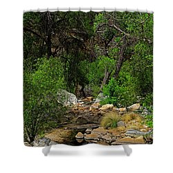 Shower Curtain featuring the photograph Sabino Canyon V49 by Mark Myhaver