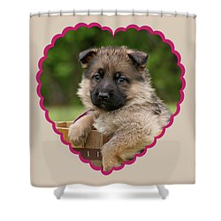 Shower Curtain featuring the photograph Sable Puppy In Heart by Sandy Keeton