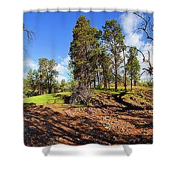 Sacred Canyon, Flinders Ranges Shower Curtain by Bill Robinson