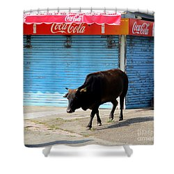 Shower Curtain featuring the photograph Sacred Cow 1 by Randall Weidner