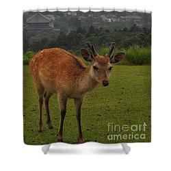 Sacred Deer Shower Curtain