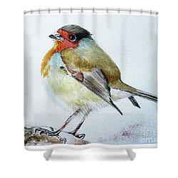 Sad Robin Shower Curtain by Jasna Dragun