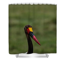 Saddle Billed Stork Shower Curtain