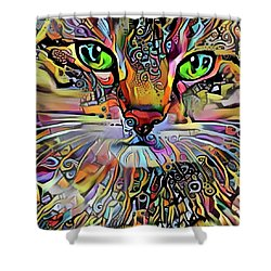 Sadie The Colorful Abstract Cat Shower Curtain