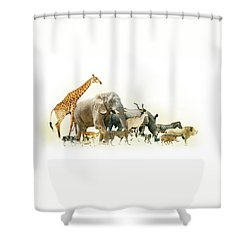 Safari Animals Walking Side Horizontal Banner Shower Curtain
