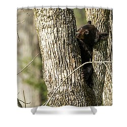 Shower Curtain featuring the photograph Safe From Harm by Everet Regal