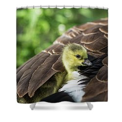 Safe Place Shower Curtain