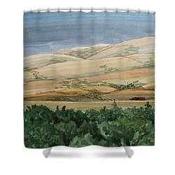 Sage Brush Field Shower Curtain by Bethany Lee