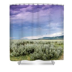 Sage Fields  Shower Curtain