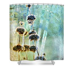 Sage Plant Shower Curtain by Robert Ball