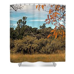 Sagebrush And Lava Shower Curtain by Cindy Murphy - NightVisions