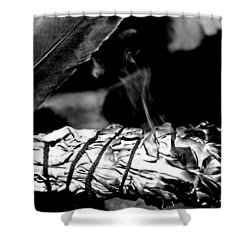 Saging Of The Black Bear 1 Shower Curtain