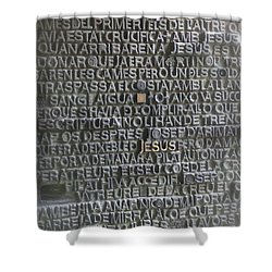 Sagrada Familia Doors Shower Curtain