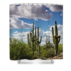 Shower Curtain featuring the photograph Saguaro And Blue Skies Ahead  by Saija Lehtonen