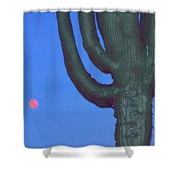 Saguaro And Eclipse IIi Shower Curtain