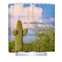 Saguaro And Mesquite In Monsoon Season Shower Curtain