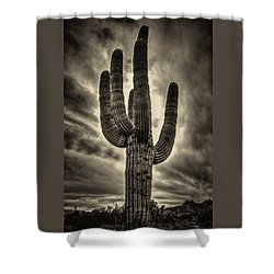 Saguaro And Storm Clouds Shower Curtain