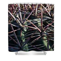 Shower Curtain featuring the photograph Saguaro Grid by Carolina Liechtenstein