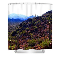 Saguaro National Park Winter 2010 Shower Curtain