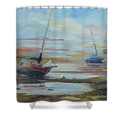 Sailboats At Low Tide Near Nelson, New Zealand Shower Curtain by Barbara Pommerenke