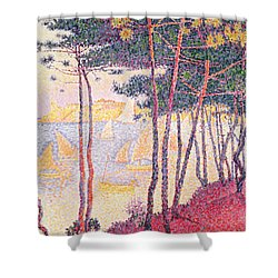 Sailing Boats And Pine Trees Shower Curtain by Paul Signac