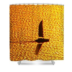 Sailing On Gold Shower Curtain by Ana Maria Edulescu