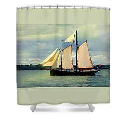 Shower Curtain featuring the digital art Sailing The Sunny Sea by Shelli Fitzpatrick