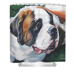 Saint Bernard Shower Curtain by Lee Ann Shepard