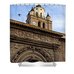 Shower Curtain featuring the photograph Saint Hieronymus Facade Of Calahorra Cathedral by RicardMN Photography