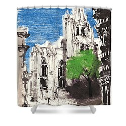Shower Curtain featuring the painting Saint Pierre Avignon Provence by Martin Stankewitz