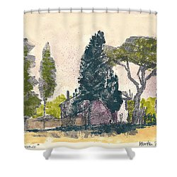 Shower Curtain featuring the painting Saint Remy De Provence Landscape by Martin Stankewitz