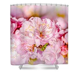 Shower Curtain featuring the photograph Sakura Cherry Flower - Wedding Bouquet by Alexander Senin