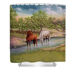 Salado 2 Shower Curtain