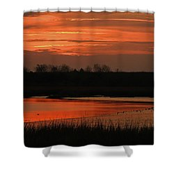 Salmon Colored Slough Shower Curtain by Laura Ragland