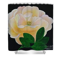 Salmon Pink Rose Shower Curtain