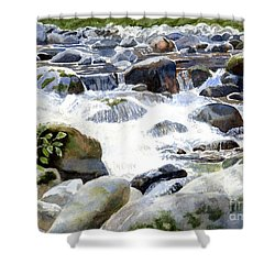 Salmon River Falls And Rocks Shower Curtain