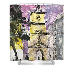 Shower Curtain featuring the painting Salon De Provence by Martin Stankewitz