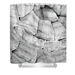 Salt Bricks No. 307-1 Shower Curtain by Sandy Taylor