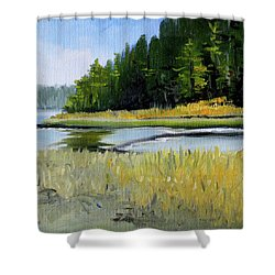 Shower Curtain featuring the painting Salt Creek by Nancy Merkle