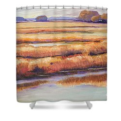 Shower Curtain featuring the painting Salt Marsh In Autumn  by Sally Simon