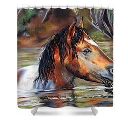 Salt River Tango Shower Curtain by Karen Kennedy Chatham