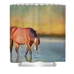 Salt River Wild Horse Shower Curtain