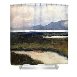 Salton Sea Shower Curtain