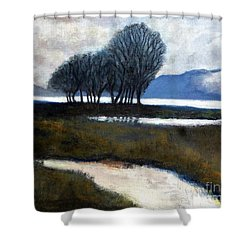 Salton Sea Trees Shower Curtain